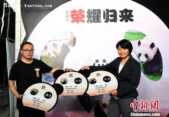 中国侨网移交三只大熊猫档案。